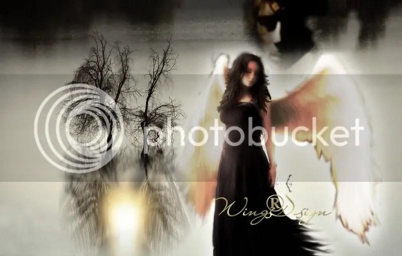 photo Angel4.jpg