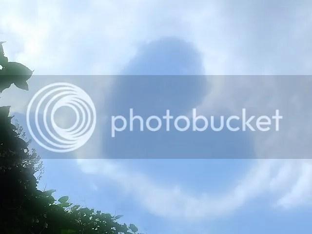 photo 1533db7f.jpg