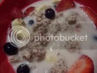 raw cereal,raw granola,raw food recipes,raw food,raw entrees