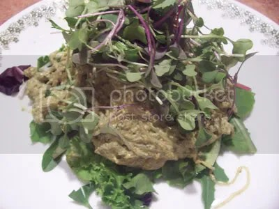 pesto,kelp noodles,entrees,raw food