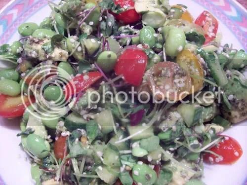salad,cucumbers,entres,salads