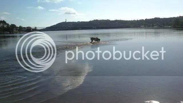 photo mobilbilderjuni13096_zps641d55a5.jpg