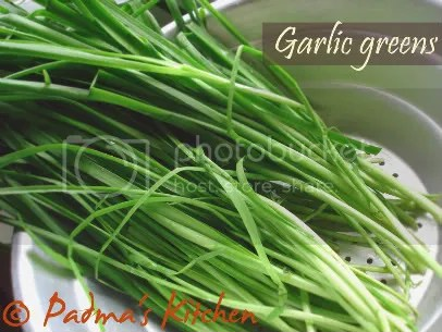 Garlic Greens Pictures, Images and Photos