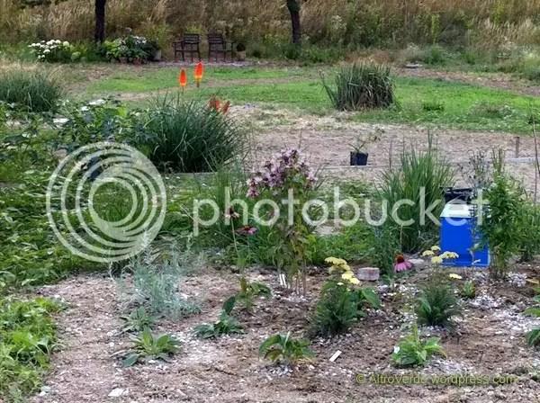 the future gravel garden