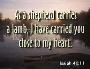 ISAIAH 40:11 Pictures, Images and Photos