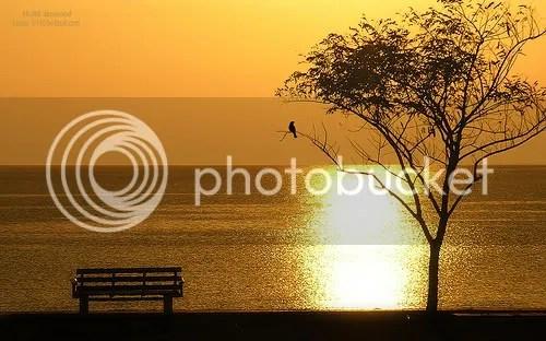 bench overlooking the water