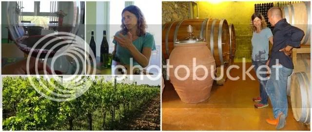 Wijn - Rocco di Carpeneto