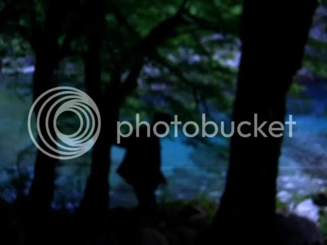 Mesa sto dasos (In the Woods) (2009) / Angelos Frantzis