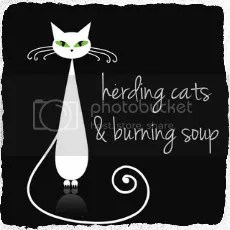 herding cats & burning soup