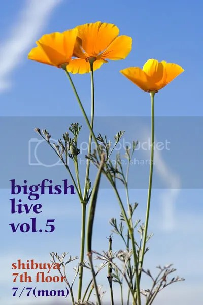 Bigfish live vol.5