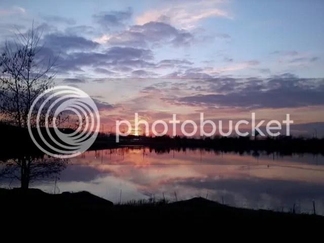 photo Photo0138.jpg