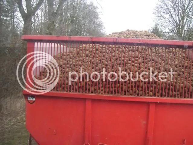 Case aardappelen halen