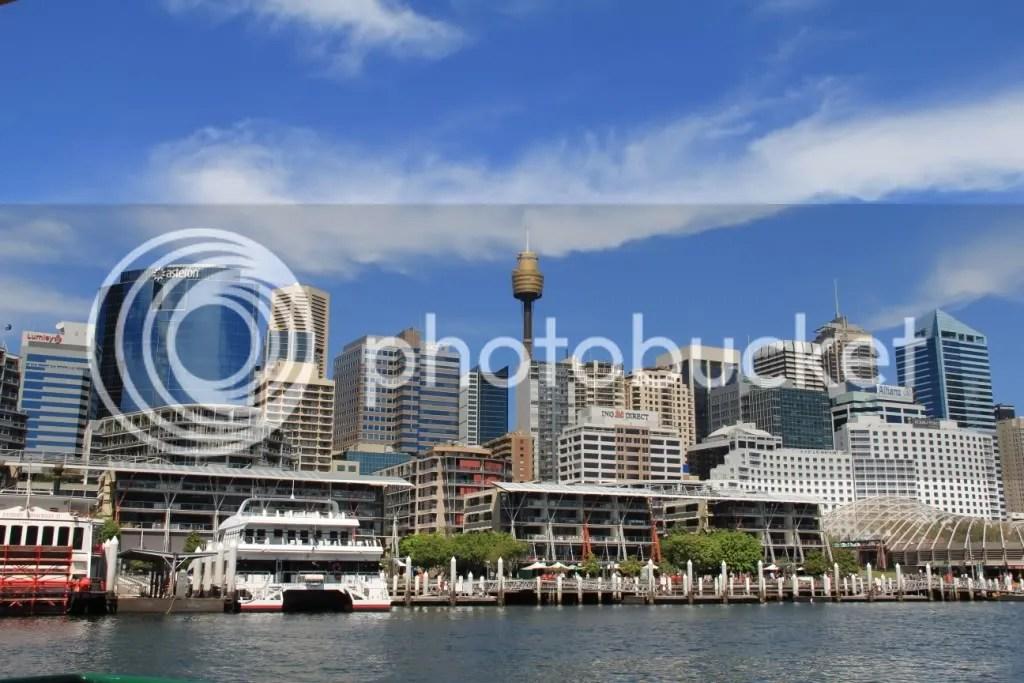 The Sydney skyline
