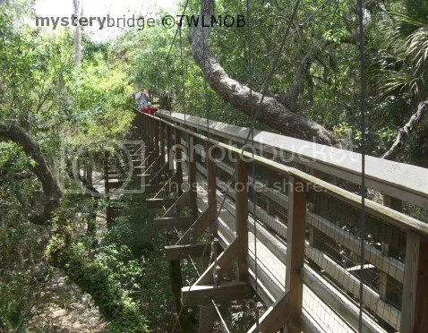 Flordia treetop walkway