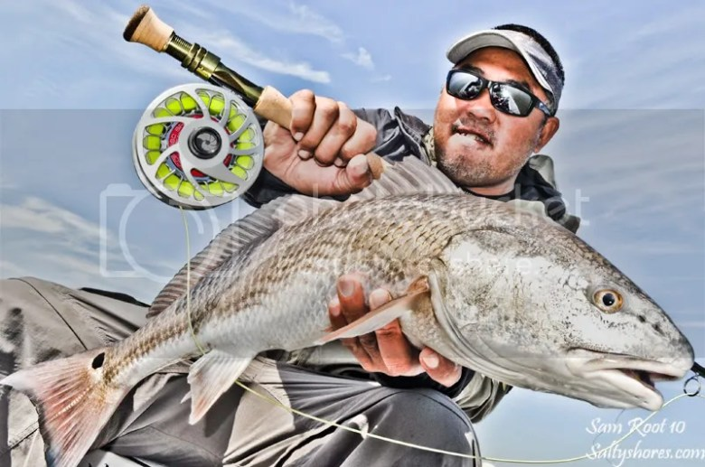 Cortland Tropic Plus Tarpon Fly line Review, Fly Fishing for redfish in Tampa Bay – Saltyshores.com