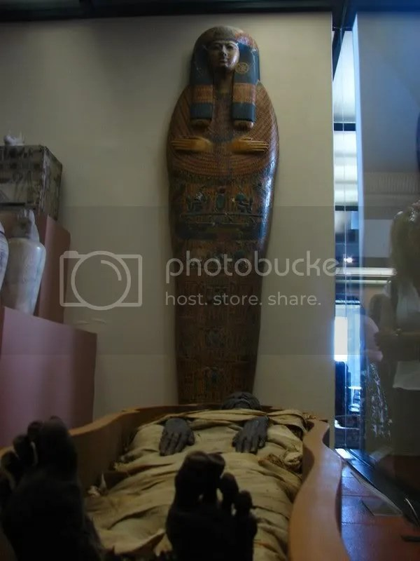 Sectiunea egipteana
