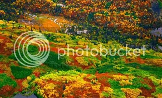 Wrangell-StEliasNationalPark.jpg picture by kjk76_98