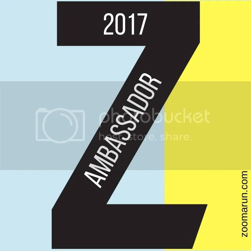 Image result for zooma ambassador 2017
