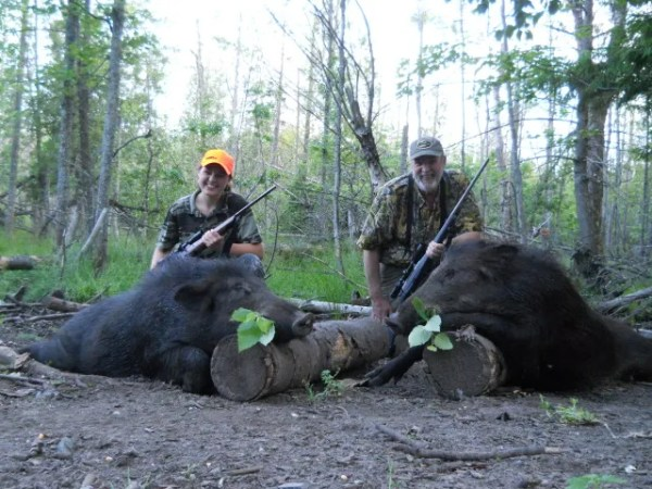Russian Boars Hunts