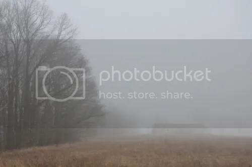 photo 8ff129b7-40b9-49fa-9cf0-b5d4a91b6826_zps8a9d883e.jpg