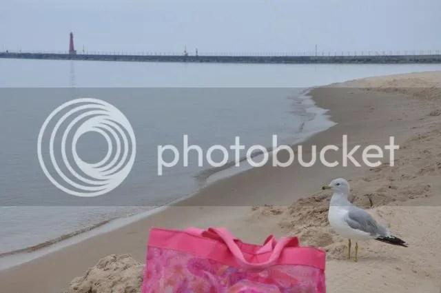 photo DSC_0040_zps474bb8fa.jpg