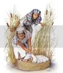 pilihan Musa, keputusan Musa, iman Musa