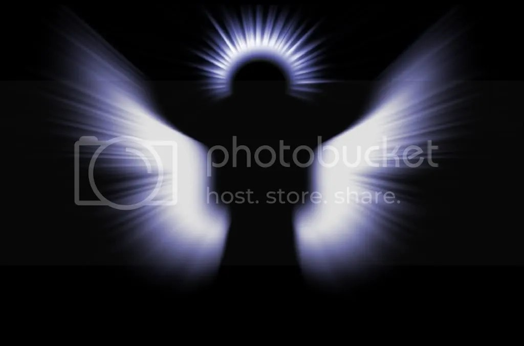 Image result for human angel