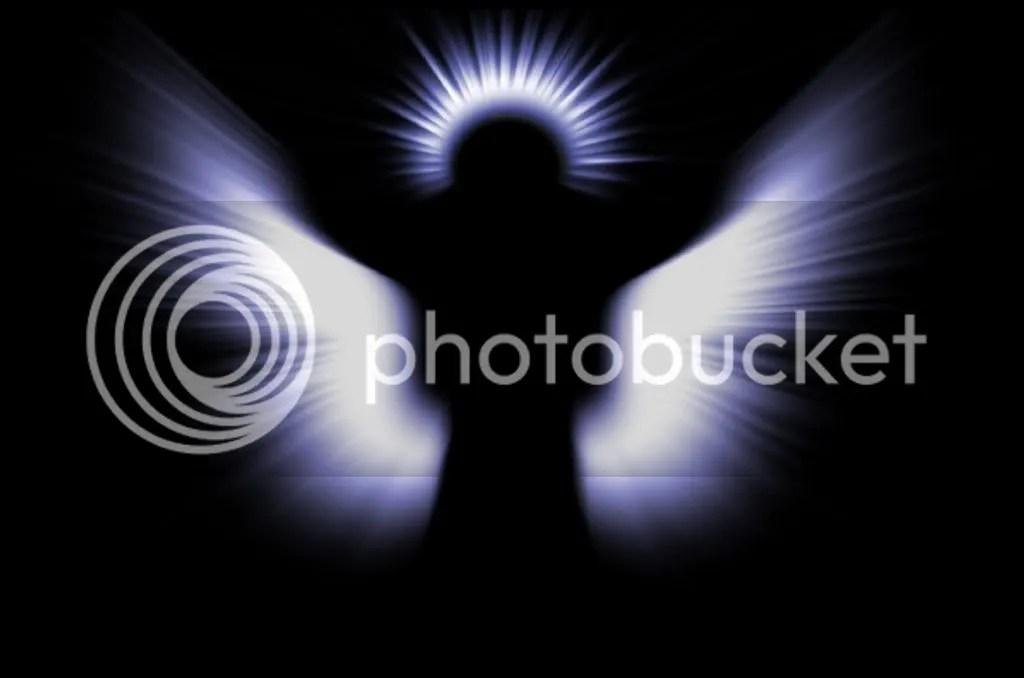 Image result for human angel