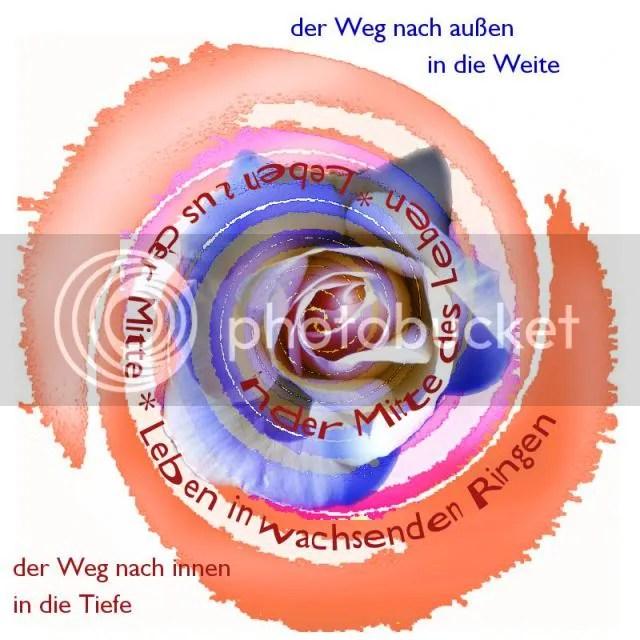 photo wachstumsringe3.jpg