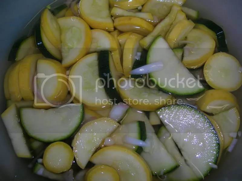 squash pickles