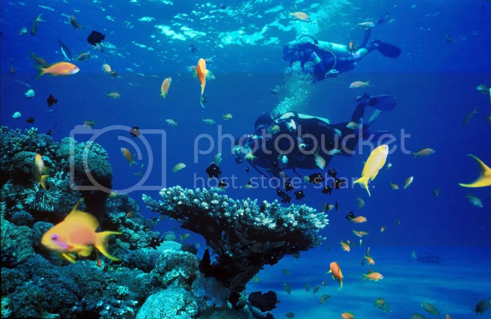 photo koh-rong-samloem-diving.jpg