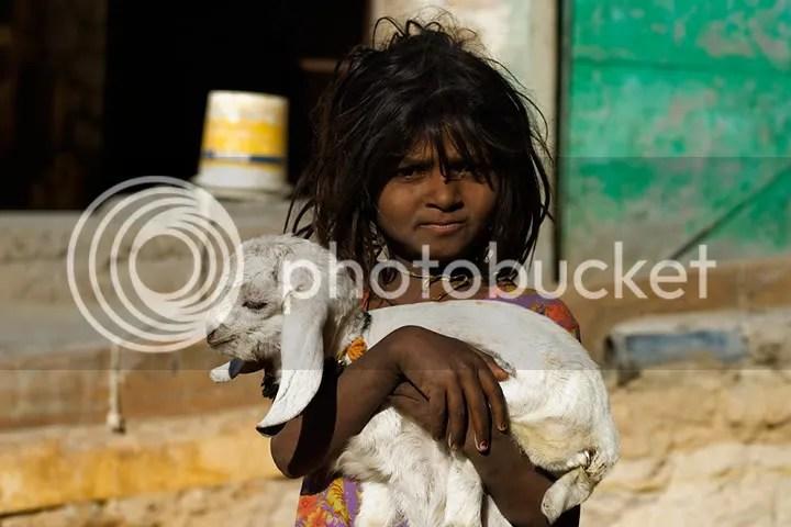 India photo: India JSR_5587.jpg