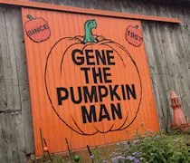 Gene The Pumpkin Man