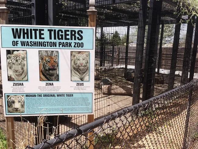 Washington Park Zoo