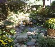 The Koi Pond on the patio at the Pottery House Cafe & Grill