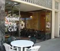 The Spotted Dog Cafe on Washington Sq. in Downtown Lansing