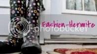 Fashion-Hermite