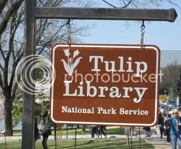 Tulip Library2