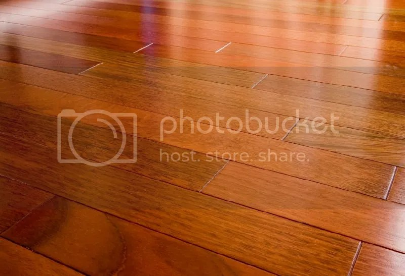 photo redwoodfloor.jpg