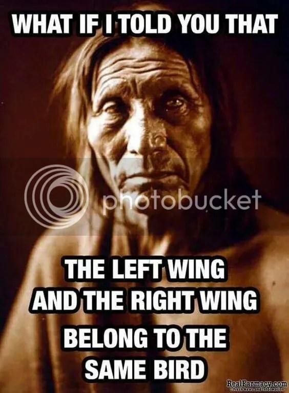 photo wings.jpg