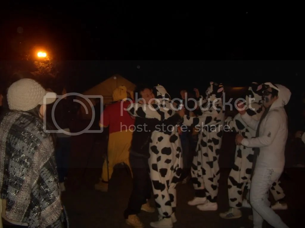 Even though Japan celebrates the New Year of the Georgian Calendar, they also use the Chinese zodiac. 2009 will be the Year of the Ox, so some people came to the Shrine dressed as cows to celebrate