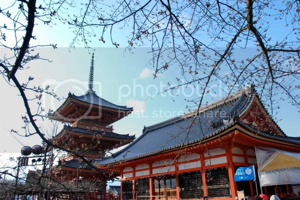 Temple buildings framed by not yet blossomed trees