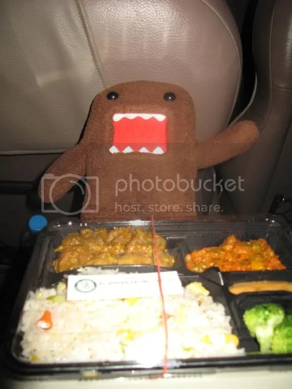 Domokun approves of this yummy dinner, though he says Couldve done with more salt in the rice.