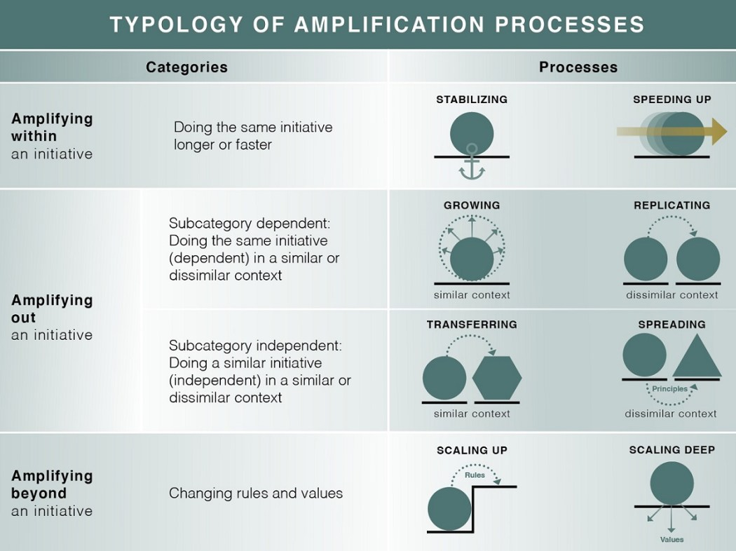 lam_amplification-processes-through-which-sustainability-initiatives-can-increase-their-impact