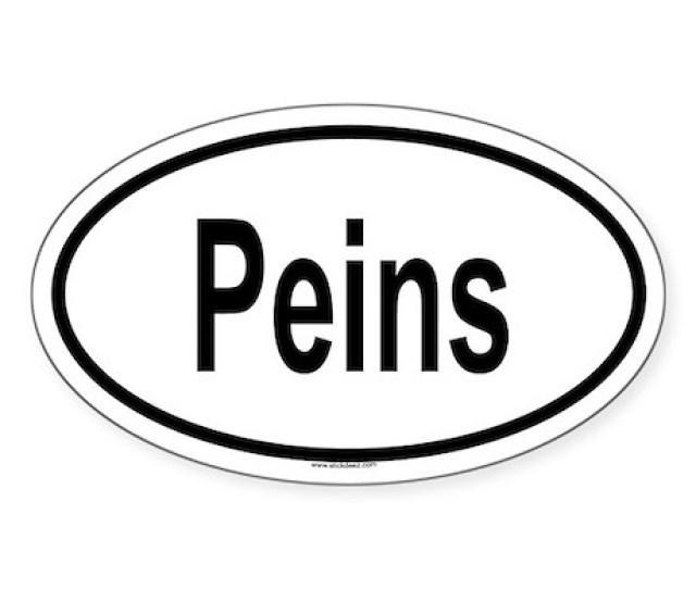 Peins Oval Sticker