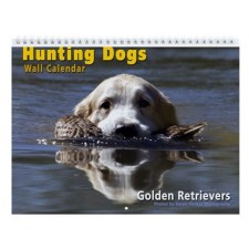 Hunting Dogs Golden Retriever Wall Calendar