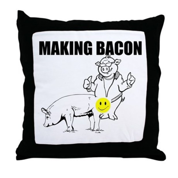 I Am Sofa King We Todd Ed Sayings Nrtradiantcom : makingbaconthrowpillow from nrtradiant.com size 618 x 618 jpeg 42kB