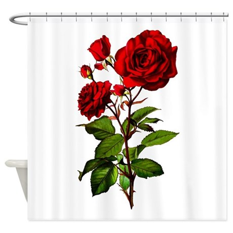 Vintage Red Rose Shower Curtain By Oph3lia