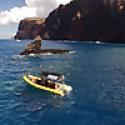 Ultimate Whale Watch & Maui Snorkeling