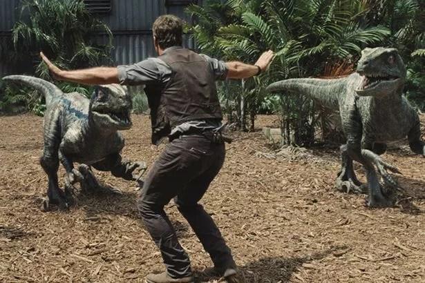 Chris Pratt in the famous scene from Jurassic World